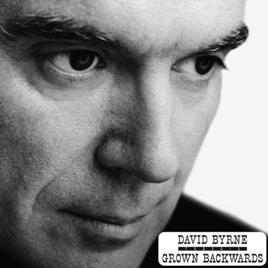 David Byrne Grown Backwards 2 LP
